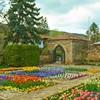 Botanická záhrada, The Palace