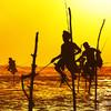 Tradičný rybolov na Srí Lanke