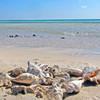 Sharm el luli beach