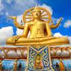 Socha Budhu