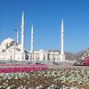 Nová mešita šejka Zayeda