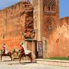 Marocká kráľovská stráž