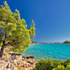 Ostrov Murter