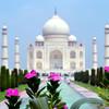 Symbol Indie