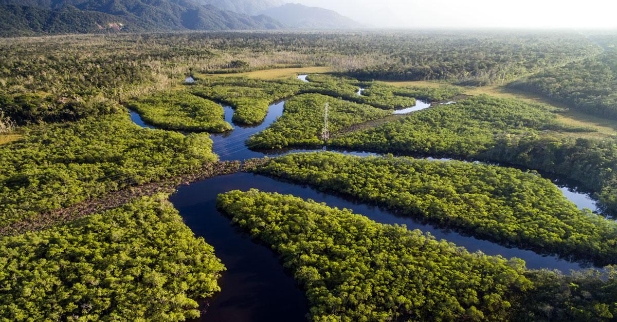 Dažďový prales v Ekvádore - sen každého cestovateľa