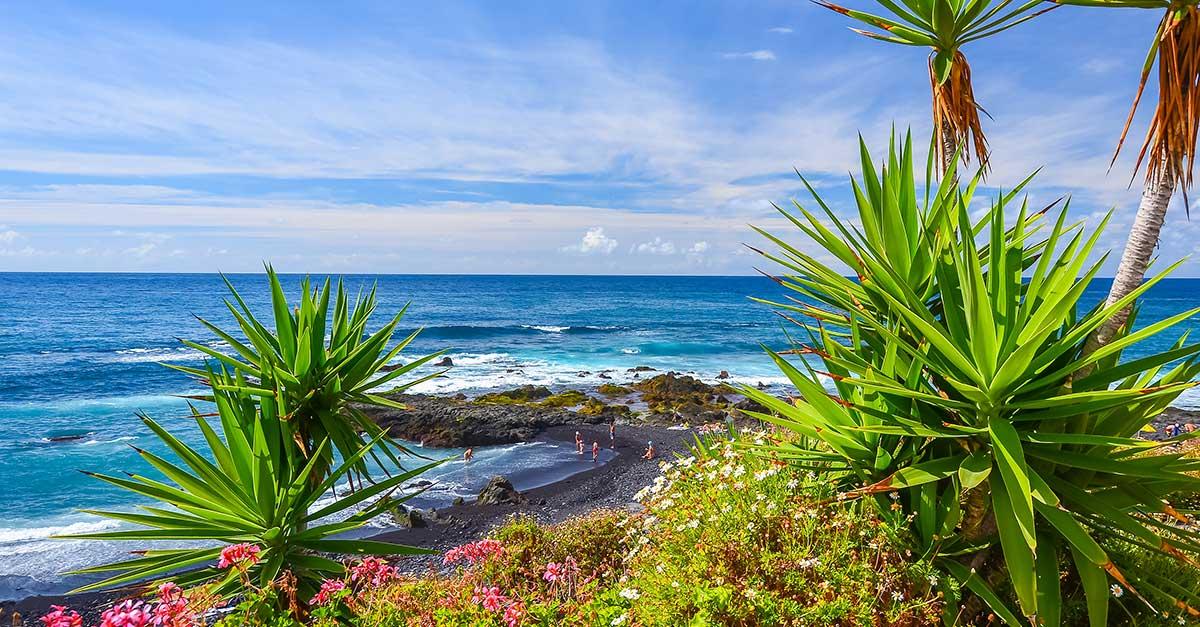 Prečo si spomedzi Kanárskych ostrovov vybrať La Palmu?